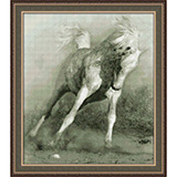 """Набор для вышивания """"Белый конь"""" Юнона 0111 (крестик)"""