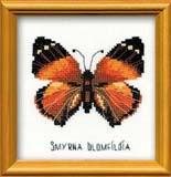 """""""Бабочка Нимфалида"""" Риолис НВ-094 (крестик)"""