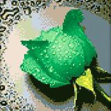 "Набор ""Зеленая роза"" картина-мозаика АЛМАЗНАЯ ЖИВОПИСЬ АЖ.028"