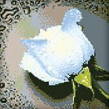 "Набор ""Белая роза"" картина-мозаика АЛМАЗНАЯ ЖИВОПИСЬ АЖ.024"