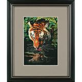 """Набор для вышивания DIMENSIONS """"Роскошный тигр"""" DMS-06961 (крестик)"""