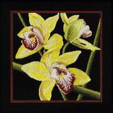 """Набор для вышивания """"Орхидеи Цимбидиум"""" РТО РТ-M264  (крестик)"""