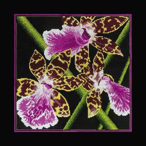 """Набор для вышивания """"Орхидеи Зигопеталум"""" РТО РТ-M265 (крестик)"""